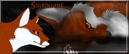 Shirogane