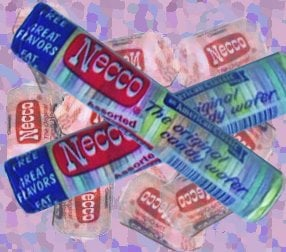 I'm a Necco Wafer!
